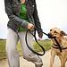 Girl Walking Dog, Dog Biting Leash - Playing
