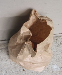 The other day, I found this paper bag by my door.